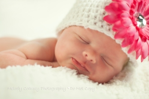 Lake City,FL Newborn Photography